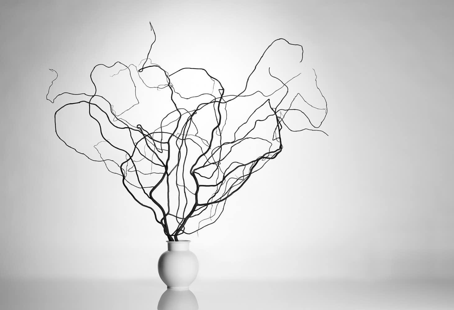 Zweige in Vase im Fotostudio