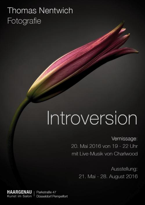 Plakat zur Ausstellung Introversion