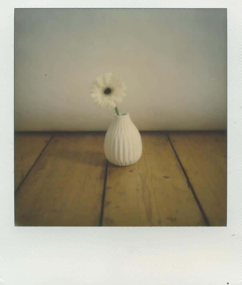 Polaroid Stillleben