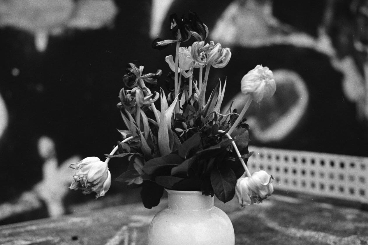 Blumen-Stillleben in urbanem Umfeld