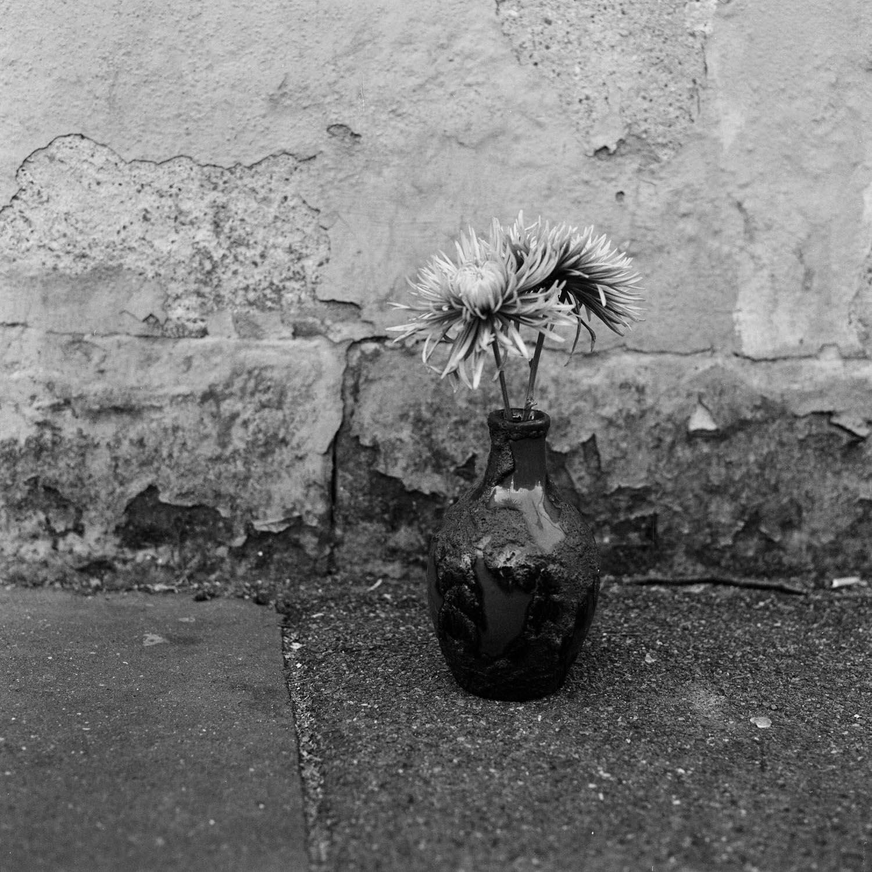 Stillleben-schwarz-weiss-5