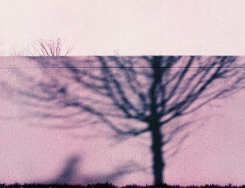 Abstrakte Vorgärten